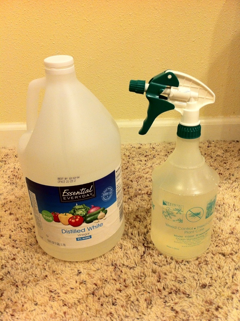 Using Distilled Vinegar For Cleaning From The Kitchen Of